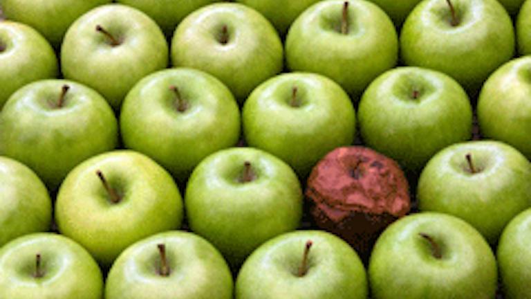 Image result for bad apple