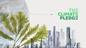 Climate Pledge 6080875117354