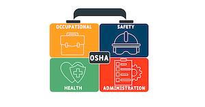 Osha Briefcase