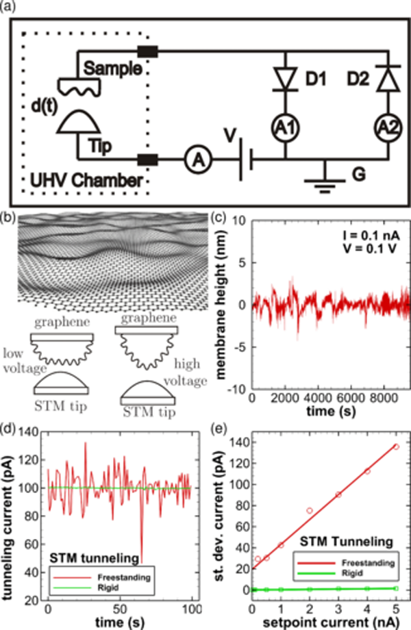 2. Illustrated are the scanning tunneling microscope (STM) datasets acquired when the tip is tunneling electrons. (a) Circuit diagram showing STM tip, sample, bias voltage, ammeters, and diode arrangement. (b) Sketch of graphene sheet in rippled state and illustrations of graphene shape changes. (c) Height fluctuations of graphene. (d) STM tunneling current vs. time for freestanding and rigid graphene. (e) Standard deviation of tunneling current vs. setpoint current for freestanding and rigid graphene. (Source: University of Arkansas)
