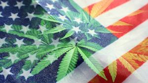 Legalized Marijuana Us Flag 5fac7e99c42ab