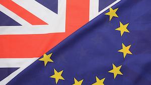 Brexit G Christopher Furlong