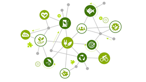 Sustainability In Supply Chain 5fd0e73001977
