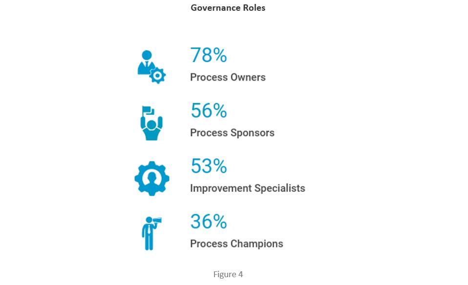 Governance Roles