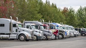 Trucks Vitpho
