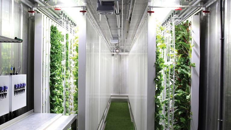 Freight Farming From Shipping Containers To Outer Space Machine