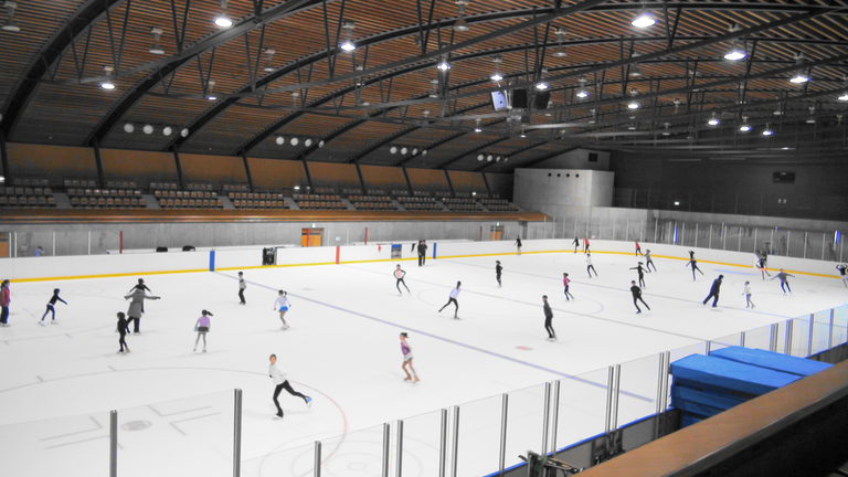 Why Ice Rinks Choose Carbon Dioxide For Climate Control Machine