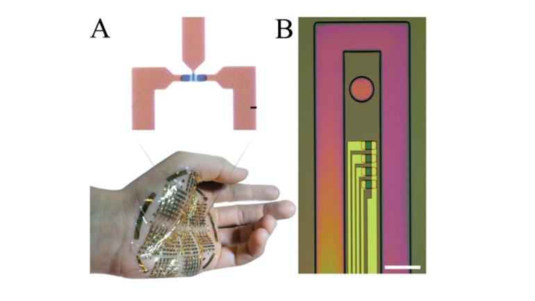 Ed Interest Transistors organiques Fig3