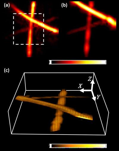 4. Tomographie opto-acoustique en mode réflexion avec un SWED (Δw = 40 nm).  SWED-40 a été utilisé pour imager un fantôme construit à partir de trois sutures en polystyrène noir avec des diamètres de 10 μm (au milieu), 30 μm (en bas) et 50 μm (en haut).  La puce SOI était orientée à 45 degrés.  par rapport au fantôme.  (a) Projection d'intensité maximale reconstruite (MIP) d'un balayage raster du fantôme avec une taille de pas de 100 μm, couvrant une zone de 4 × 4 mm.  (b) PMI reconstituée de la zone délimitée par la ligne blanche en pointillés dans le panneau (a), numérisée avec un pas de 50 μm, couvrant une zone de 2 × 2 mm.  (c) Rendu volumétrique des données du panneau (b) sur une profondeur de 1 mm.