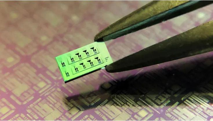 2. Le dispositif de silicium sur isolant fabriqué mesure environ 3 × 6 mm et comporte huit détecteurs.  Les fines gravures noires sur la surface de l'appareil sont les circuits photoniques interconnectant les détecteurs.