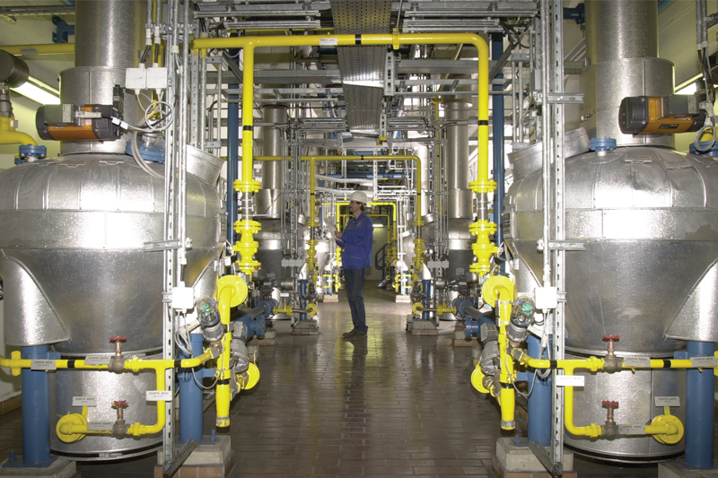 Plant manufacture dry drinks - concentrates and waste products