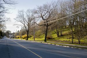Tdworld 7496 Trees Powerlines Brandontoomey
