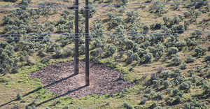 The defined, defensible space around the poles was created in a wildfire-prone area through herbicide application.