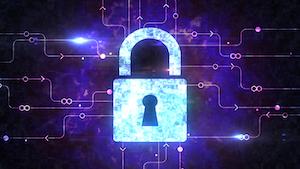 Cybersecurity Peshkova