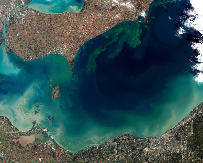 Figure 4. Pronounced algae bloom in Lake Erie, 2011. National Aeronautics and Space Administration, Washington, D.C. Available from https://earthobservatory.nasa.gov